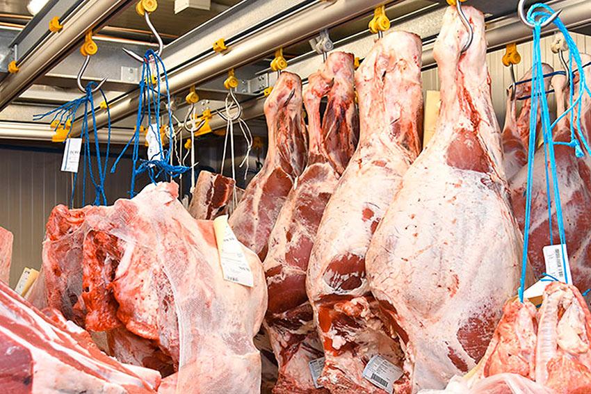 scarico stoccaggio carne bergamo